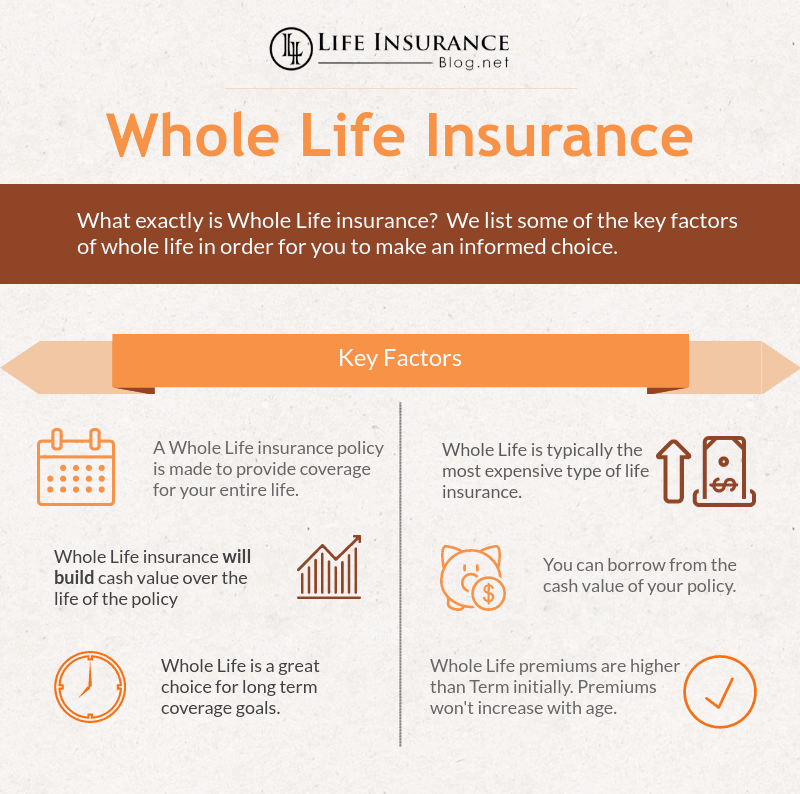 Life Insurance Quotes Whole Life: Whole Life Policy Life Insurance Types Explained Term Life